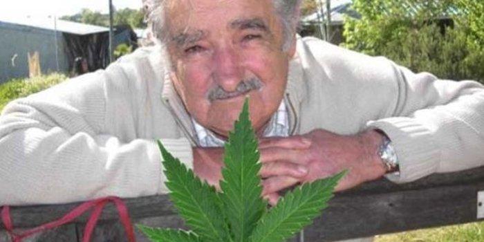 José Pepe Mujica president uruguay cannabis legalisation legalisierung