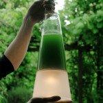 Latro – A lâmpada de algas que produz eletricidade através da fotossíntese
